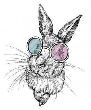 Hand drawn rabbit in glasses