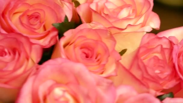Close-up of a large bouquet of beautiful roses rotates. Pink roses close-up. Flower shop. Flower farm, selective focus, shallow depth of field