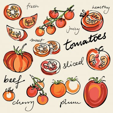 Various tomatoes kinds