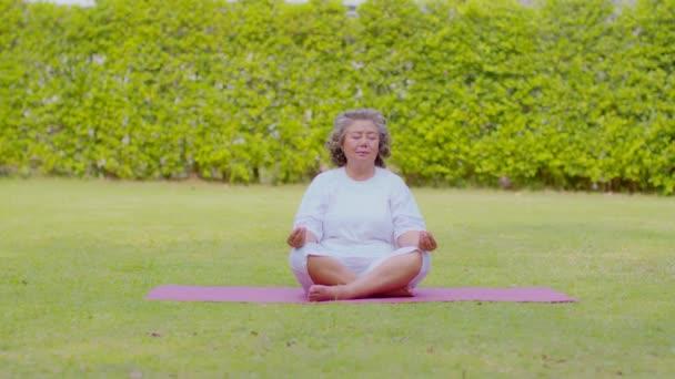 Klid zdravé asijské starší ženy s bílými vlasy dělá jóga lotos pózovat pro meditaci na zelené trávě v parku, Wellness Senior Rekreace s koncepcí jógy