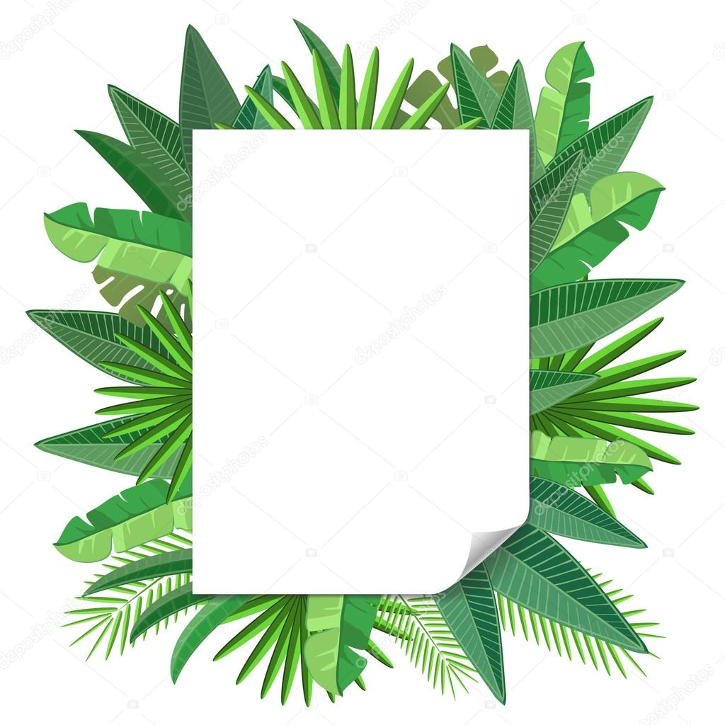 blank paper Tropical leaves  vector