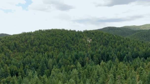 AERIAL lövés a hegy és az erdő