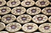 Fotografie 12 gauge Schrotpatronen verwendet für die Jagd