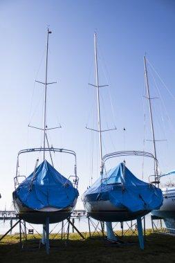 sailboats stored in a marina