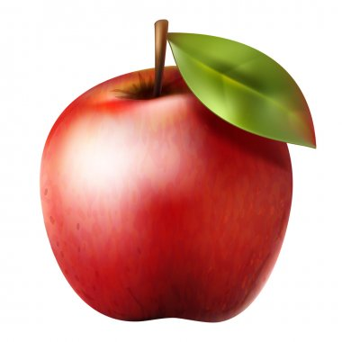 Red realistic apple