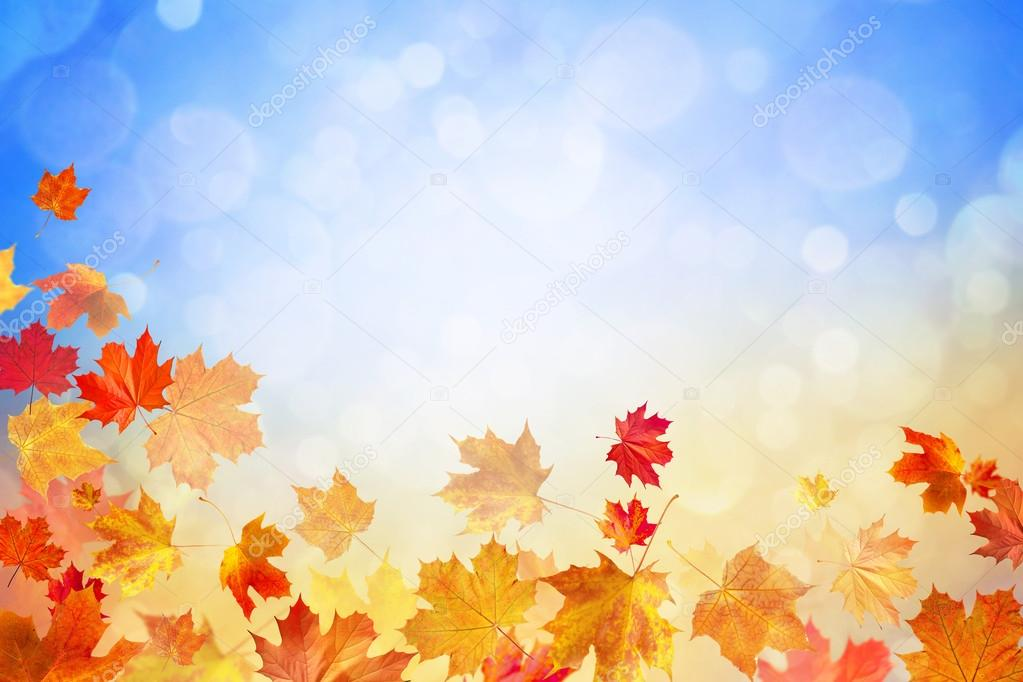 autumn leaves on blue sunny glow background