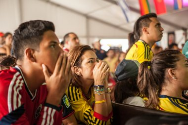 MIAMI, USA - July 04, 2014: Colombian fans  suffering at the fin