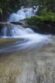 Wasserfall in einem üppigen Regenwald.