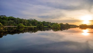 River in the Amazon Rainforest at dusk, Peru, South America