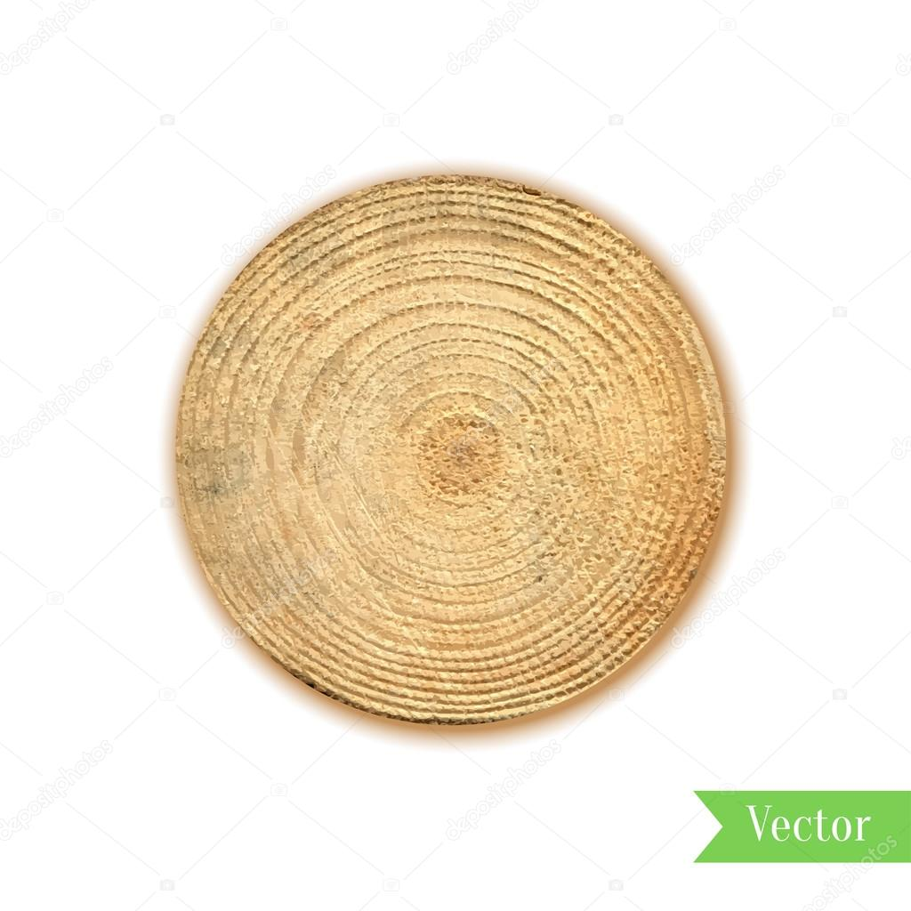 Tree stump, round cut with annual rings vector. Wooden cross section. Vector illustration. Realistic isolated circle tree can be used for icon, sticker, label, backdrop.