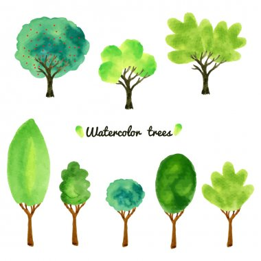 collection of trees, shrubs, and grasses, i