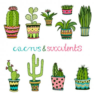 Cactuse and succulent hand drawn set.