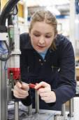 Ženské učeň inženýr pracující v továrně v počítači