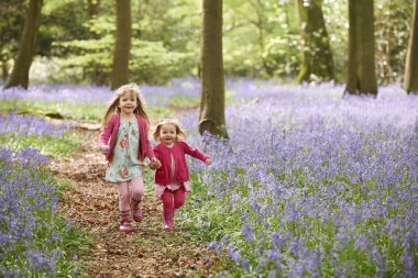 Two Girls Running Through Bluebell Woods Together stock vector