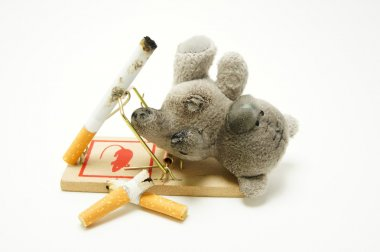 The hazards of smoking for children. Bear is in the mousetrap and cigarette.