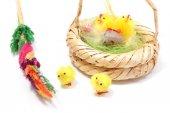 Velikonoční kuřata v proutěném koši a barevné palmy