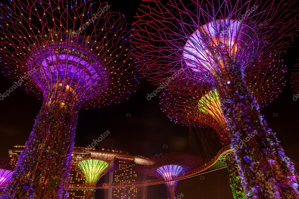 dazzling light show at the supertree grove and marina bay in