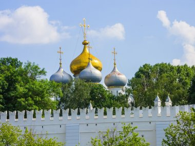 View of Novodevichy Convent from the pond, Moscow, Russia