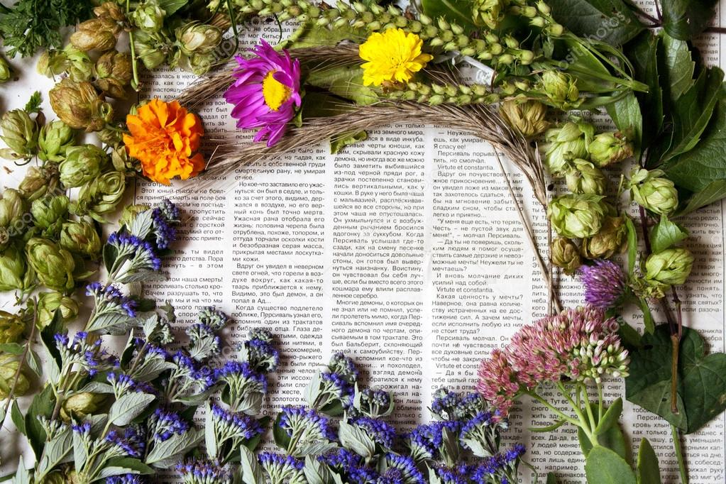 Different flowers on newspaper background