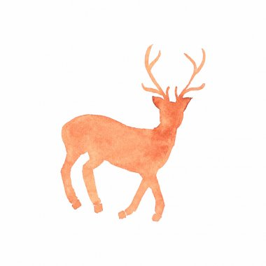 Watercolor deer on the white background, aquarelle. Vector illustration. Native american stylization