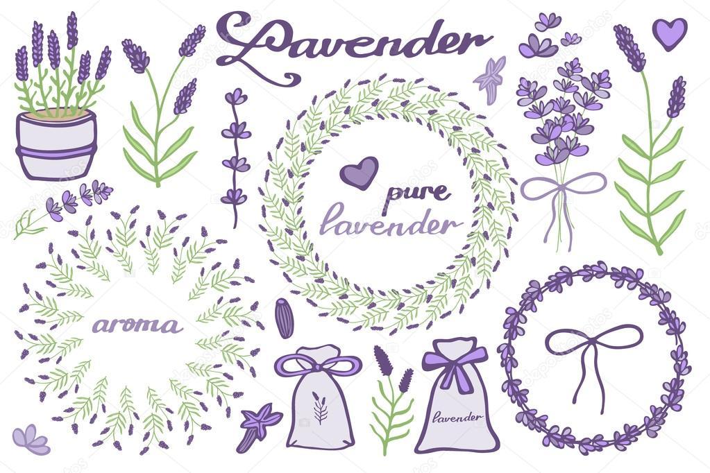 Lavender Set Hand Drawn Cartoon Lavandula Collection