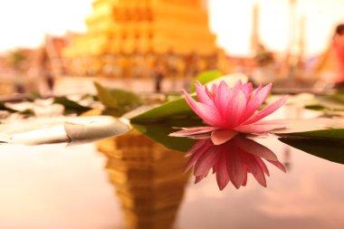 The temple of Wat Phra Kaew in the city of Bangkok