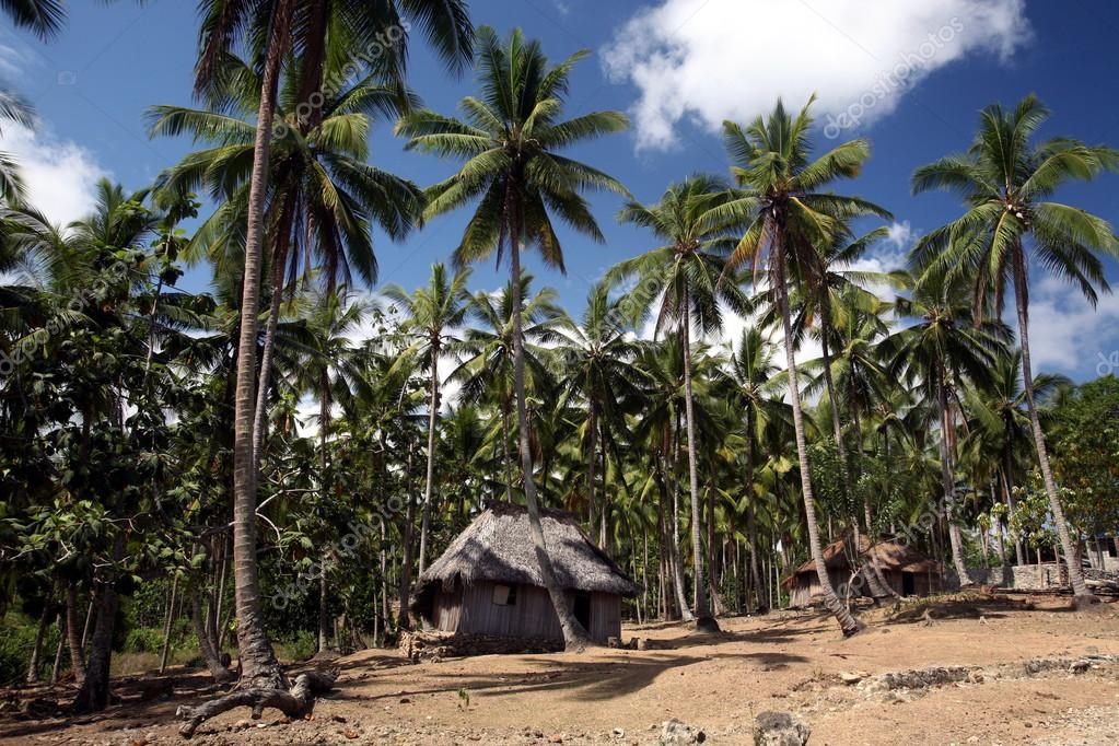 traditional huts at East Timor
