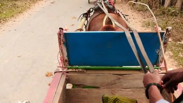 View from running horse cart in Myanmar slow motion