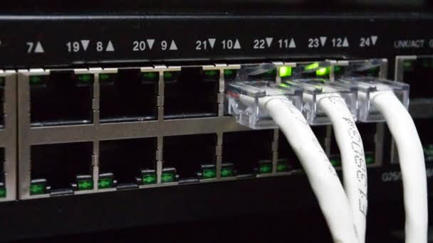 Netzwerksschalter und LAN-Leitung