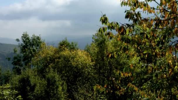 Krásné barevné podzimní krajiny. Hory a mraky. Alsasko, Francie