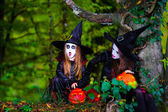 Photo Two witches in the forest, Halloween concept
