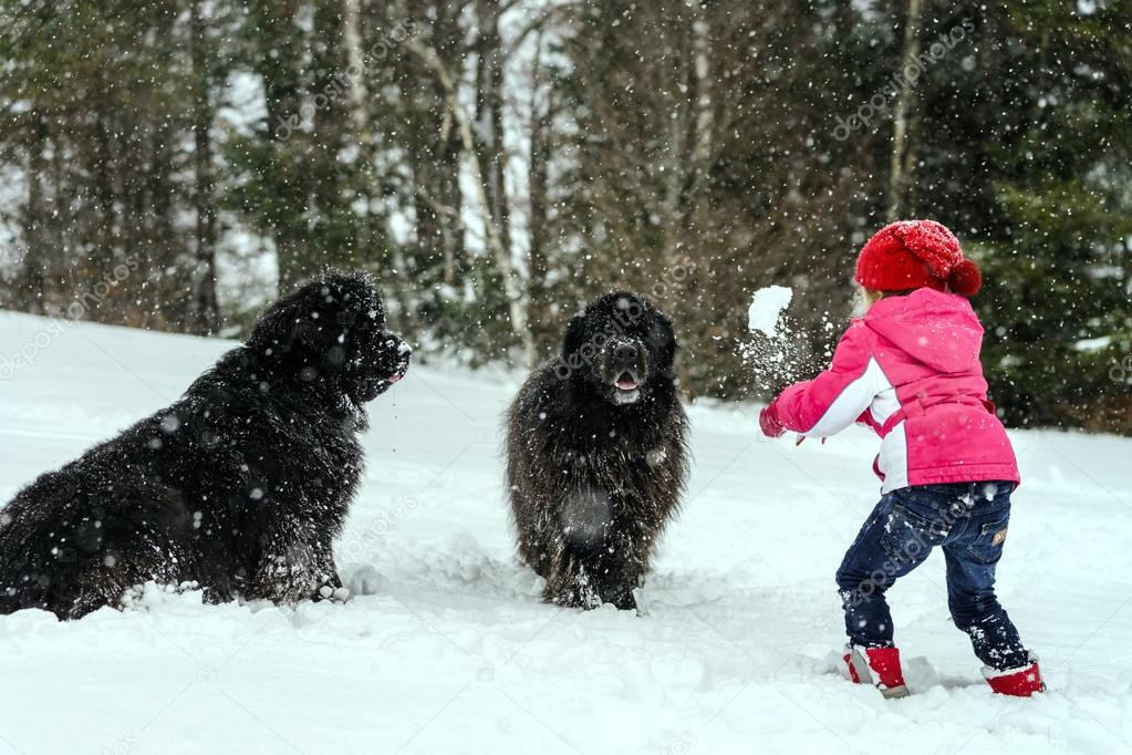 Children playing with big water-dog in snow