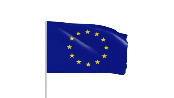 UE flag with metal pole footage