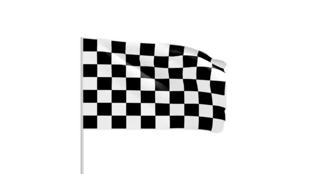 Chess flag with metal pole footage