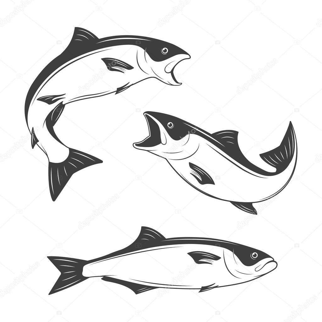 Set of monochrome vector fish