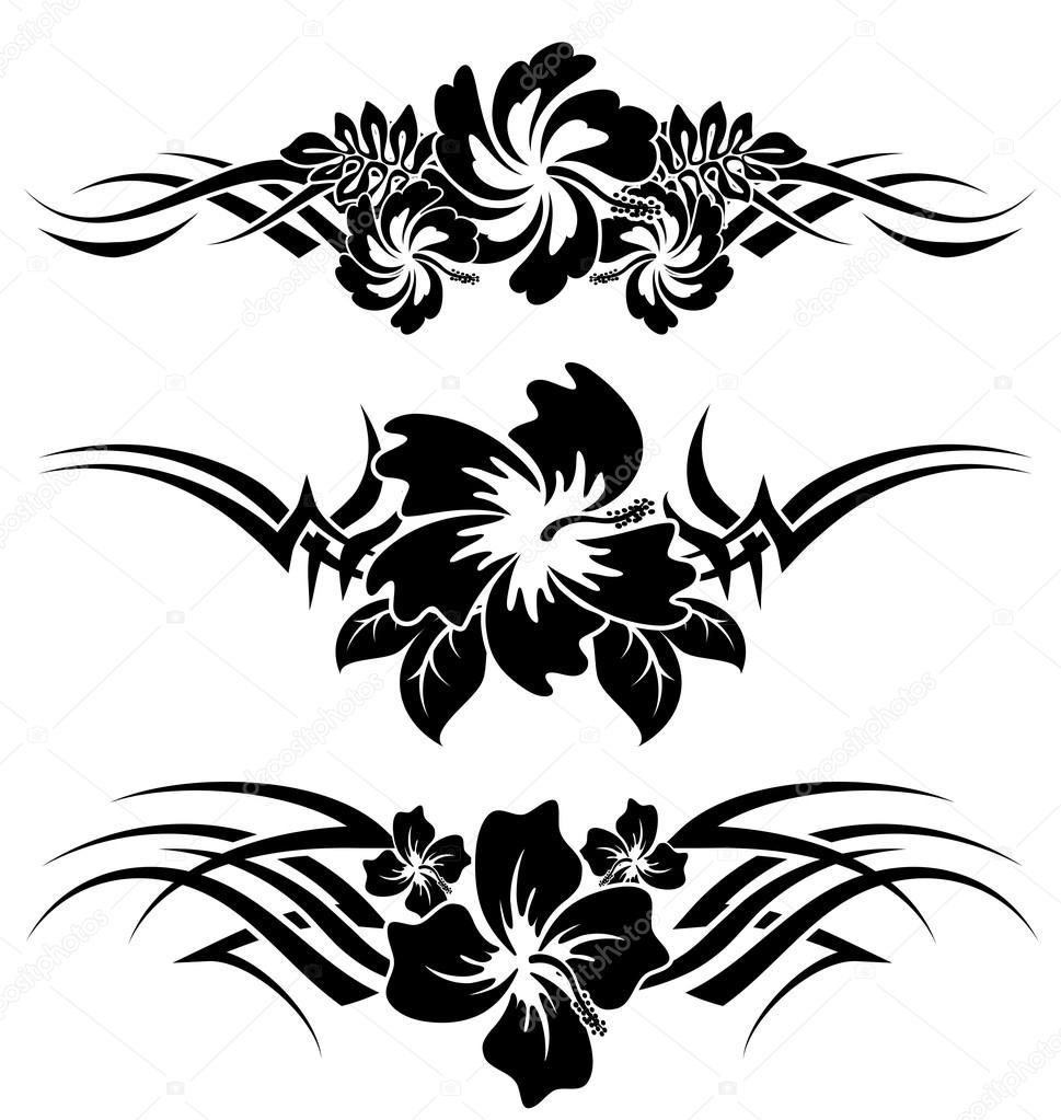 Hibiscus flowers 6