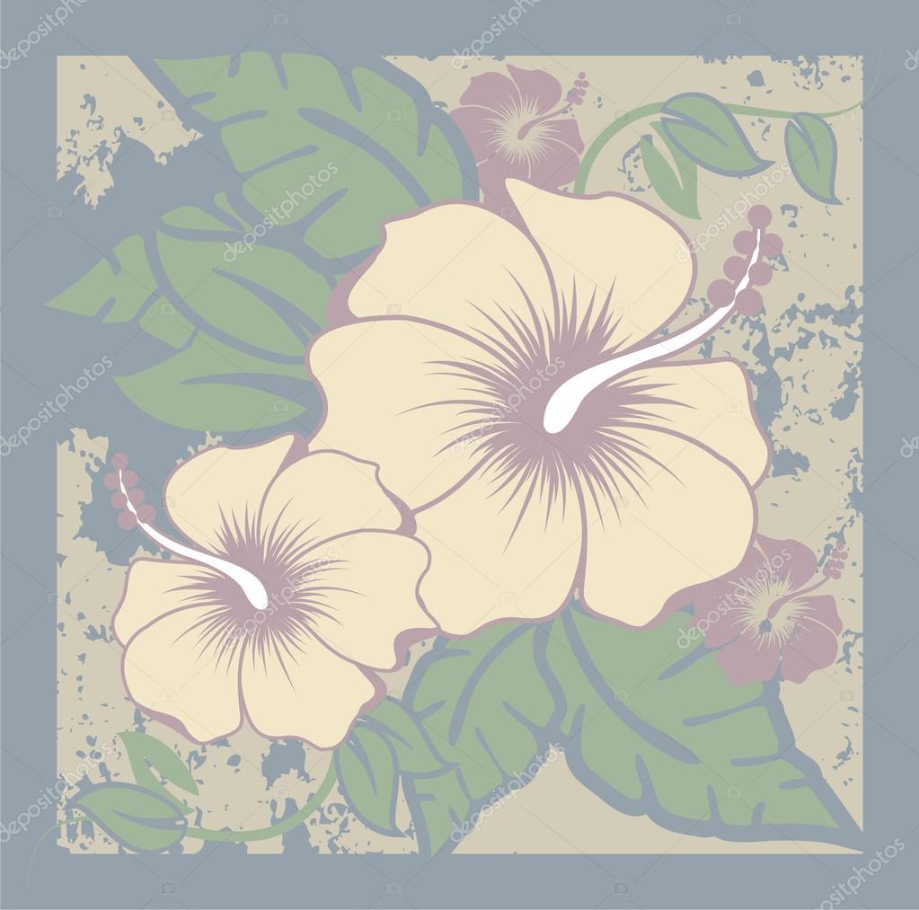 Hibiscus Flowers 7