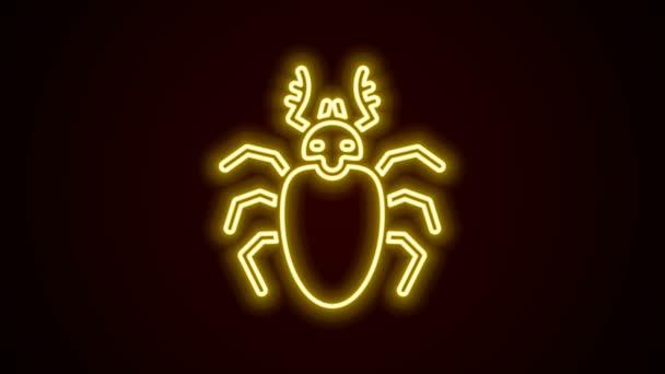 Leuchtende Leuchtschrift Beetle Hirsch Ikone isoliert auf schwarzem Hintergrund. Hörnerkäfer. Großes Insekt. 4K Video Motion Grafik Animation