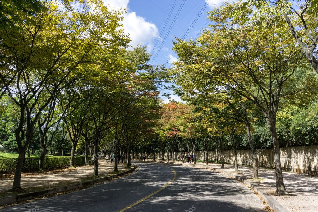 Incheon Grand Park early autumn