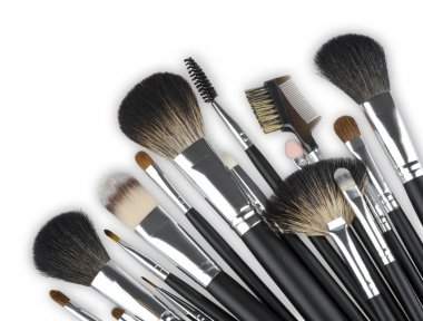 Various professional makeup cosmetic brushes isolated on white background