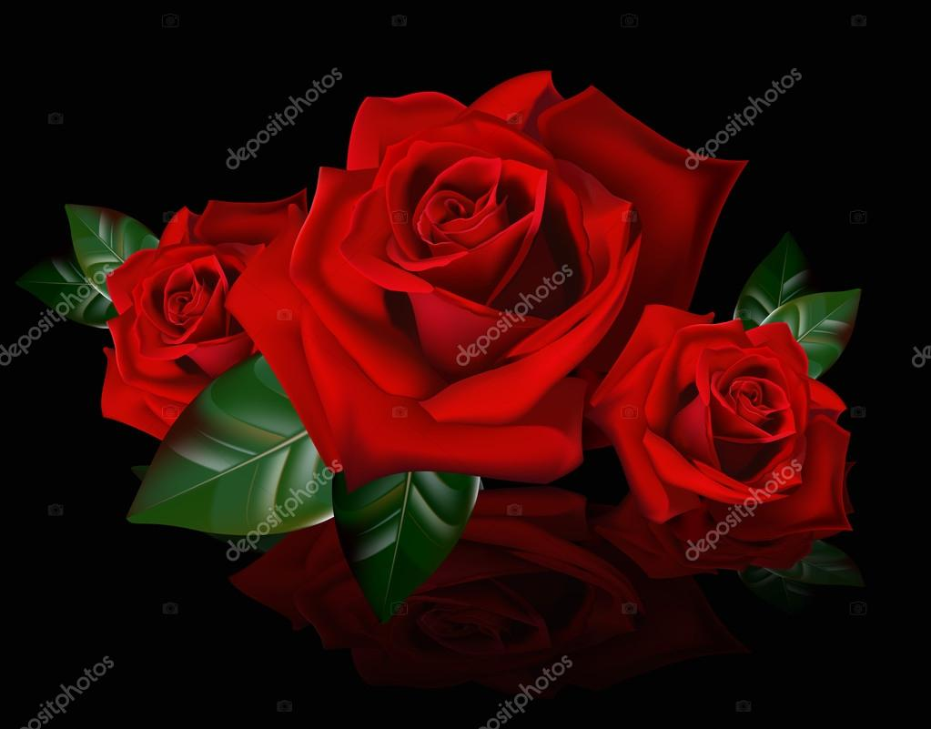 Bouquet of red roses with reflection