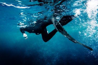 Denizde Freediver yüzmek