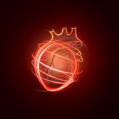 visualization of the human heart made of neon lines