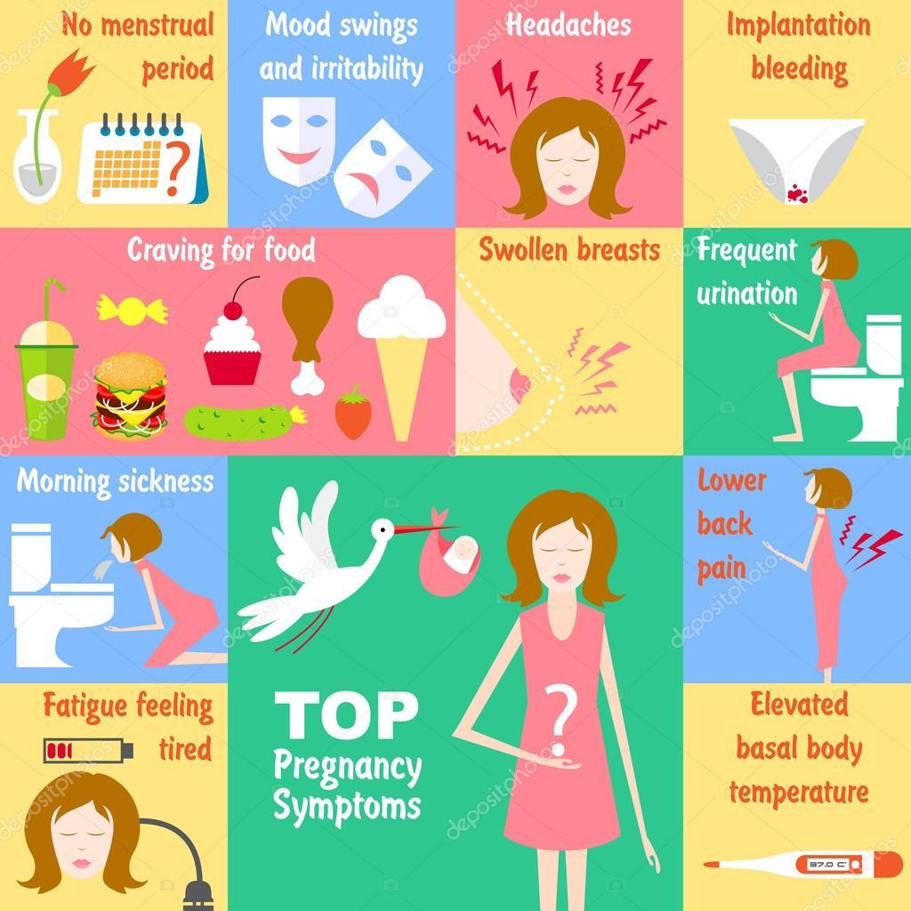 Top Pregnancy Symptoms Stock Vector C Artskvortsova 91663386