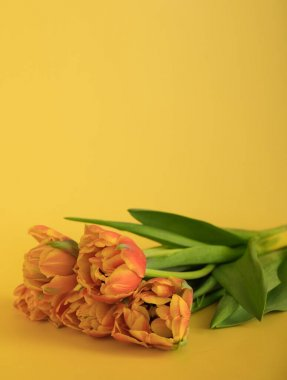 Orange-red fresh tulips in a bouquet on a yellow background. Greetings, celebration, romance concept. Copy space for your text. Bright vertical postcard for congratulations on all holidays and events