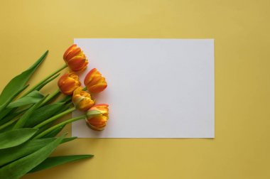 Orange-red fresh tulips in a bouquet and white sheet of paper on a yellow background. Greetings, celebration, romance concept. Copy space for your text. Bright colorful postcard for congratulations on all holidays and events