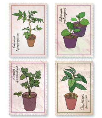 Set of labels: potted seedlings