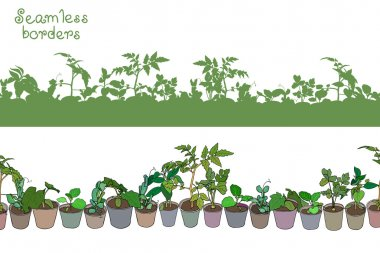 border with seedlings and potted plants