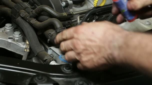 Car Repair Mechanic Filling the Washer Fluid Tank