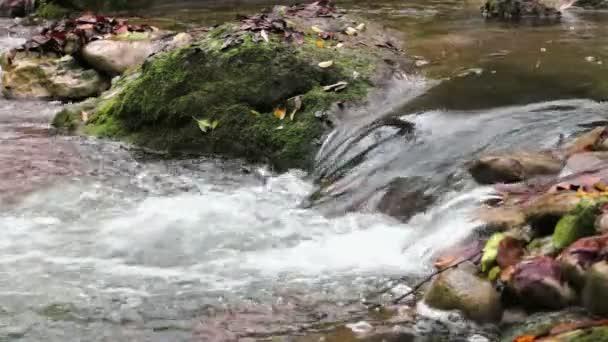 Cascade Creek čerstvé na podzim